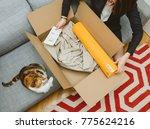 paris  france   nov 6  2017 ... | Shutterstock . vector #775624216