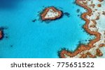 great barrier reef at...   Shutterstock . vector #775651522