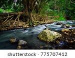 Creek At Currumbin Rock Pools