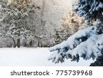snow covered bench in the... | Shutterstock . vector #775739968