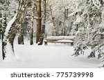 snow covered bench in the... | Shutterstock . vector #775739998