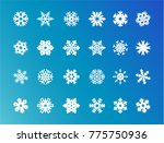 snowflakes ice pieces vector... | Shutterstock .eps vector #775750936