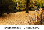 autumn landscape in a rainy day.... | Shutterstock . vector #775805392