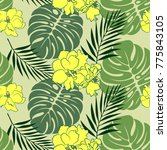 tropical flower pattern.... | Shutterstock .eps vector #775843105