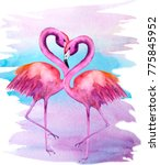 watercolor illustration of two... | Shutterstock . vector #775845952