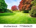 spring green park. city park... | Shutterstock . vector #775860625