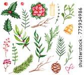 set of hand painted watercolor... | Shutterstock . vector #775934986