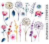 watercolor set of botanic... | Shutterstock . vector #775989166