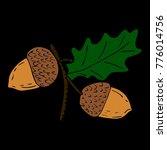acorn vector illustration   Shutterstock .eps vector #776014756