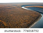 Siberian Larch Taiga And The...