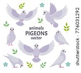 pigeons collection. vector... | Shutterstock .eps vector #776031292