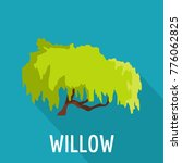 willow tree icon. flat... | Shutterstock .eps vector #776062825
