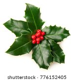 christmas holly isolated on... | Shutterstock . vector #776152405