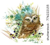 Stock photo owl forest animals watercolor illustration 776222155