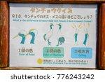 hokkaido  japan   july 12  2013 ... | Shutterstock . vector #776243242