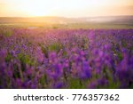 sunset over a violet lavender... | Shutterstock . vector #776357362