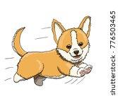 corgi puppy smiling and running ...   Shutterstock .eps vector #776503465