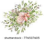watercolor drawing of twig with ... | Shutterstock . vector #776537605