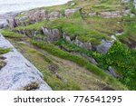 rocky terrain and vegetation on ... | Shutterstock . vector #776541295
