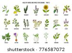 hand drawn set of culinary... | Shutterstock .eps vector #776587072