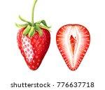 set of ripe strawberries... | Shutterstock . vector #776637718