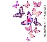 beautiful pink butterfly... | Shutterstock . vector #776687686