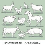 farm animals sketch. livestock... | Shutterstock .eps vector #776690062