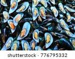 asian green mussel   seafood... | Shutterstock . vector #776795332