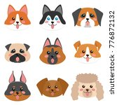 cute dog faces collection.... | Shutterstock .eps vector #776872132