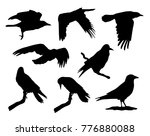 vector collection of black... | Shutterstock .eps vector #776880088