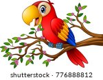 cartoon macaw on tree branch | Shutterstock .eps vector #776888812