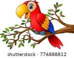 cartoon macaw on tree branch | Shutterstock .eps vector #776888812