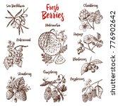 set berries. raspberry ...   Shutterstock .eps vector #776902642