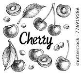 cherry vector drawing set.... | Shutterstock .eps vector #776919286