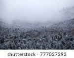 trees covered with hoarfrost... | Shutterstock . vector #777027292