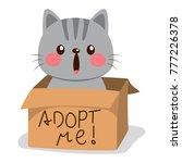 cute little cat on a cardboard...   Shutterstock .eps vector #777226378