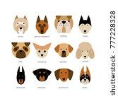 vector flat dog icon set....
