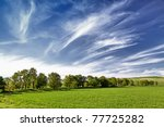 several trees on the field and... | Shutterstock . vector #77725282