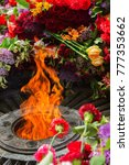 memorial to memory of unknown... | Shutterstock . vector #777353662