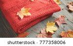 autumn accessories knitted... | Shutterstock . vector #777358006