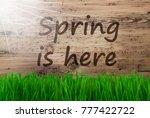 sunny wooden background  gras ... | Shutterstock . vector #777422722
