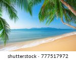 palm and tropical beach | Shutterstock . vector #777517972