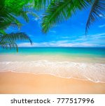 palm and tropical beach | Shutterstock . vector #777517996