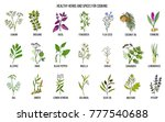 hand drawn set of culinary... | Shutterstock .eps vector #777540688