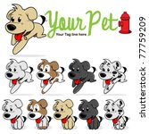 cute puppy dog on a a white... | Shutterstock .eps vector #77759209