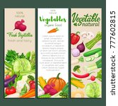 banners design with vector... | Shutterstock .eps vector #777602815