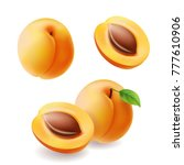 apricots with leaf and half... | Shutterstock .eps vector #777610906