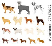 dog breeds cartoon icons in set ... | Shutterstock .eps vector #777670372