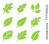 leaves icon set.  | Shutterstock .eps vector #777705622