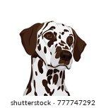 dalmatian ogs.  symbol of the... | Shutterstock .eps vector #777747292
